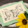 Handmade Paper Note Cards