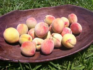 peaches6.13