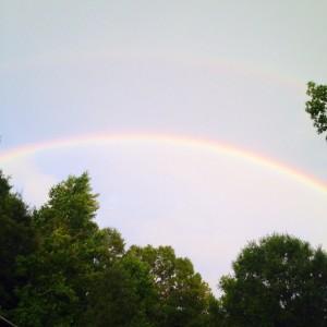 rainbowjune2014